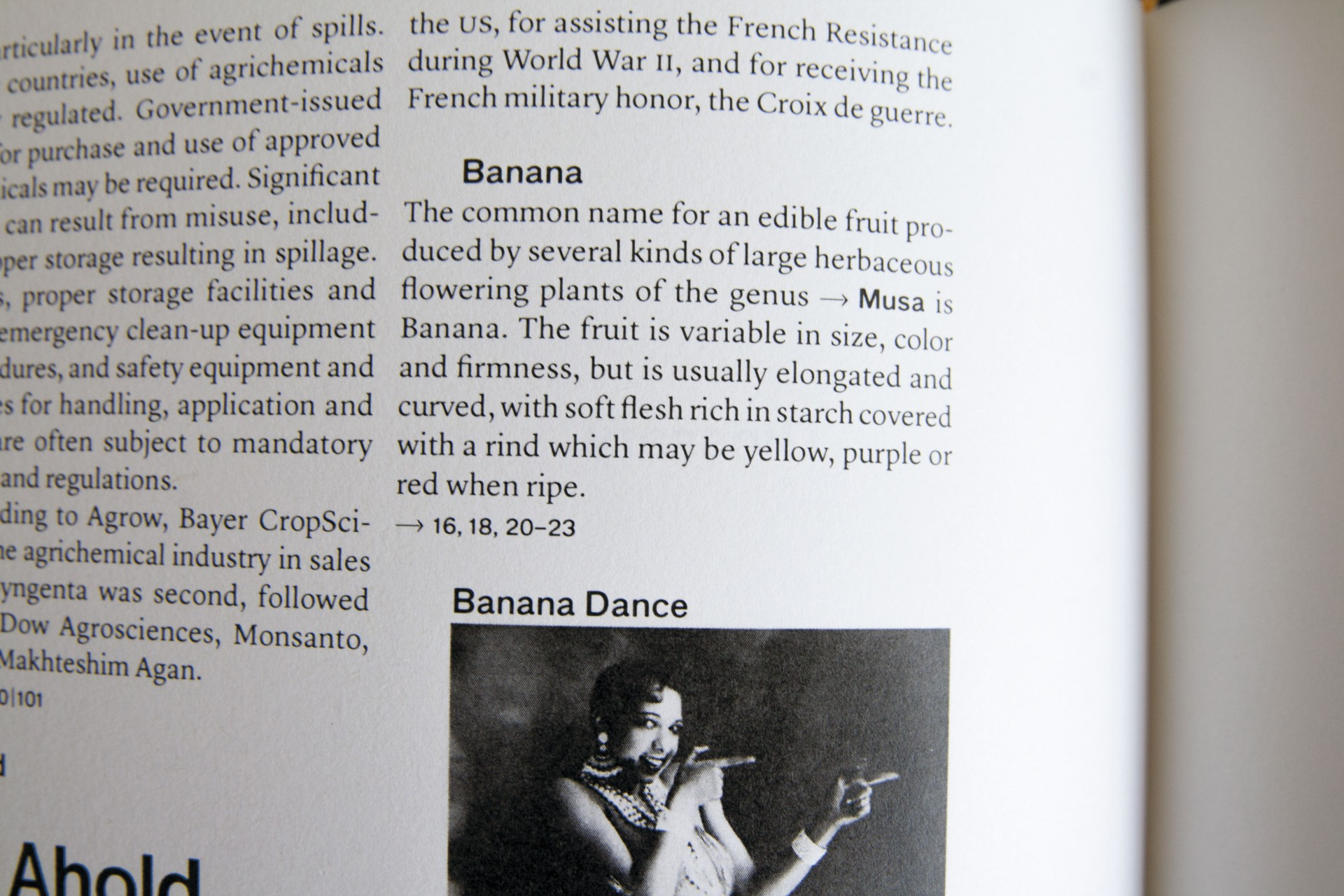 Barbara  Hoffmann The Banana Atlas